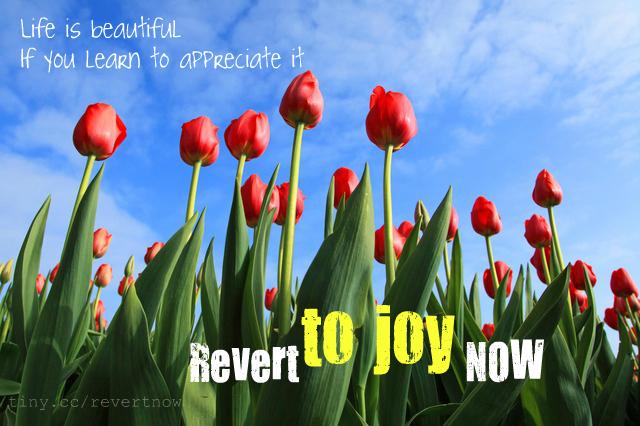 Revert to joy now - 02