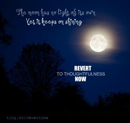 Revert to thoughtfulness - 03