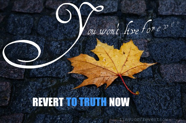 Revert to truth now - 03