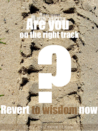 Revert to wisdom now - 05